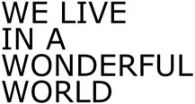 sebastien-laroche-hote-wonderful-world